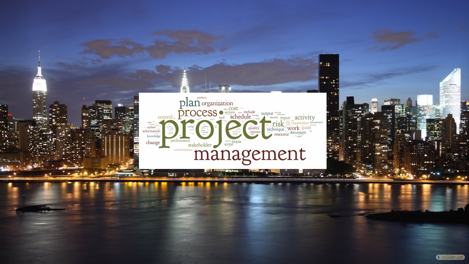 Technology Project Management