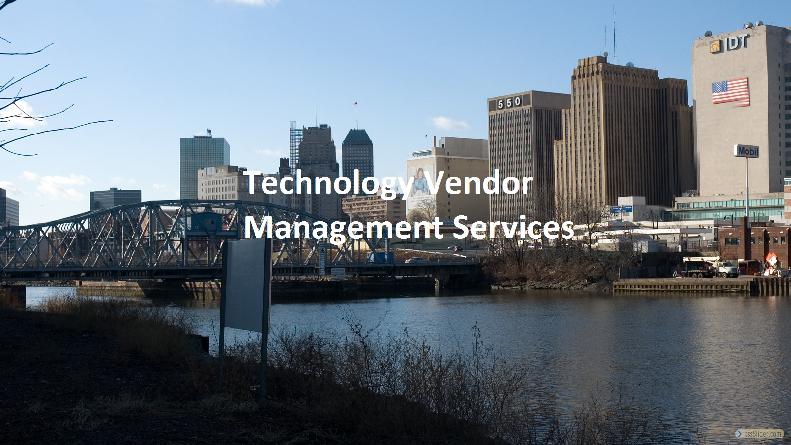 Technology Vendor Management